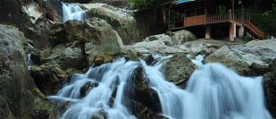 Sekayu Agricultural Park and Waterfall